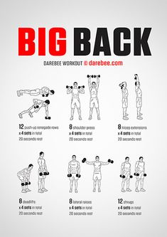 Big Back workout poster – Fitness&Health&Gym For Women Workout Routine For Men, Gym Workout Tips, At Home Workouts, Back Workouts For Men, Mens Fitness Workouts, Back Workouts With Dumbbells, Workout Plans, Men's Chest Workouts, Back Routine
