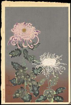 Bakufu, Ohno (1888-1976) Title: Chrysanthemum Date: 1950s
