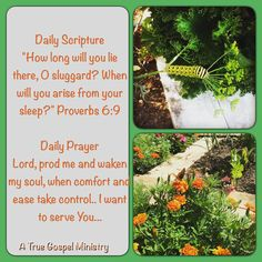 """Daily Scripture """"How long will you lie there, O sluggard? When will you arise from your sleep?"""" Proverbs 6:9   Daily Prayer Lord, prod me and waken my soul, when comfort and ease take control.. I want to serve You... #dailyscripture #dailyprayer #atruegospelministry #morningprayer #morningscripture #scripturequote #biblequote #quote #seekgod #godsword #godislove #gospel #jesus #jesussaves #teamjesus #LHBK #youthministry #preach #testify #pray #rollin4Christ"""