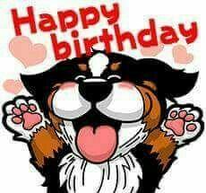 Birthday  wishes Birthday Cartoon, Dog Birthday, Birthday Bash, Birthday Wishes Cards, Happy Birthday Greetings, I Love Dogs, Puppy Love, Mountain Dogs, Bernese Mountain