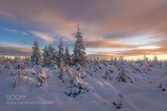 First Day of Winter! by bonnieandclyde. Please Like http://fb.me/go4photos and Follow @go4fotos Thank You. :-)