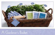 A Gardener's Basket Gift Idea Welcome Baskets, Gift Baskets, Gifts For Husband, Gifts For Girls, Homemade Gifts, Diy Gifts, Best Friend Gifts, Best Gifts, Trending Christmas Gifts