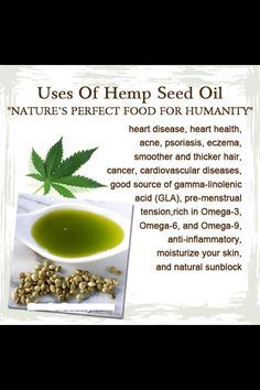 Where To Buy Hemp Seed Oil Toronto