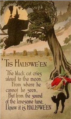 'Tis Halloween | The black cat cries aloud to the moon from where he cannot be seen, but from the sound of the lonesome tune I know it is Halloween.
