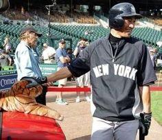 2012.08.08 打撃練習前、虎のぬいぐるみの頭をなでながら笑顔を見せるヤンキース・イチロー