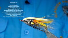 Tying a Sunburst Skagit Mist Steelhead:Salmon Fly with Davie McPhail