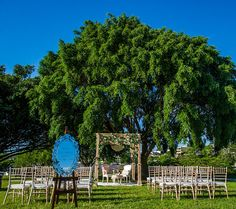 A dreamy wedding setting in New Farm Park with the river as a backdrop and the blue sky arching overhead | Image by Studio Impressions.