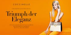 home_coccinelle_20150225.jpg (1000×500)