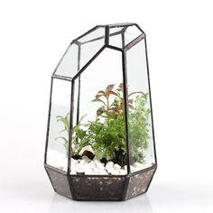 Amazon.com : 7.4 inches Height Polyhedron Irregular Glass Geometric Terrarium Box Tabletop Succulent Plant Planter Fern Moss Flower Pot : Patio, Lawn & Garden