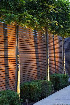 78 ideas of modern garden fence designs for summer ideas lovely small front garden design waterfall best ideas Backyard Fences, Garden Fencing, Backyard Landscaping, Landscaping Ideas, Modern Landscaping, Backyard Privacy, Backyard Ideas, Patio Fence, Front Garden Ideas Driveway