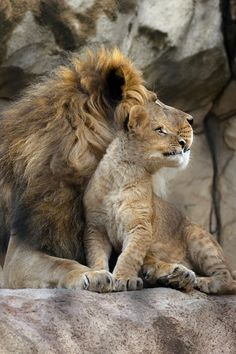 Father & Son Marcel Ott