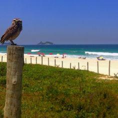 Praia da Barra da Tijuca em Rio de Janeiro, RJ