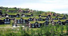 Jikka, la piccola comunità giapponese dai tetti appuntiti
