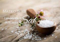 Mateo 5:13 Vosotros sois la sal de la tierra; pero si la sal se desvaneciere, ¿con qué será salada? No sirve más para nada, sino para ser echada fuera y hollada por los hombres.♔