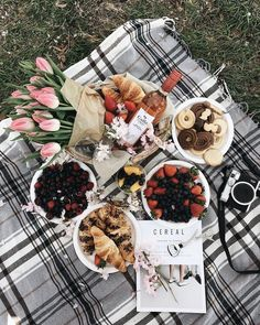 As long as it is a spot with a gorgeous view and minimal distractions around, it will be the perfect picnic. Picnic Date, Picnic Style, Romantic Picnics, Romantic Dinners, Aesthetic Food, Food Photography, Good Food, Brunch, Food And Drink