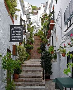 Lovely Frigiliana. La Bodeguilla is a highly recommended restaurant where you can taste typical flavours of mediterranean food, it is managed by family sisters. Nice ambient. Great terrace with amazing views.