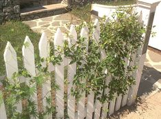 Just got the idea that these would make SUPER CUTE trellis's on the sides of my house!!!!!! Or as a garbage can surround (something that doesn't attract bees of course)