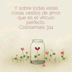 #Biblia #Colosenses #Amor #Vinculo #Perfecto