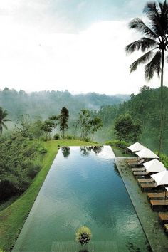 Looking over the infinity edge to the Ayung River valley at Alila Ubud in Bali.