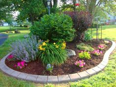 Clever & Beautiful Yard Island Landscaping for Backyard and Front yard 20 Small Flower Gardens, Small Flowers, Flower Gardening, Organic Gardening, Purple Flowers, Beautiful Flowers, Flower Garden Design, Flowers Garden, Front Yard Landscaping