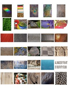 THE ART OF CREATIVITY STUDIO: PHOTOGRAPHING TEXTURES AND PATTERNS