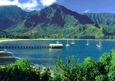 Kauai Vacation Rentals & Luxury Homes Rentals. We are committed to excellence in the luxury vacation rental business on the beautiful Island of Kauai. Our mission is to give you a vacation experience that exceeds your expectations. Beautiful Islands, Beautiful Beaches, Beautiful Scenery, Vacation Places, Vacation Spots, Great Places, Places To Go, Kauai Vacation Rentals, Kauai Island