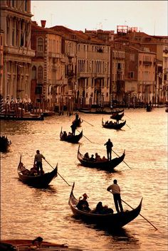 Europe. Italy. Venezia. Venice. Gondoliers ferry customers across the Grand Canal as the late evening sunshine turns the water gold.