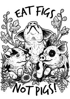 Image of: Dog Pre Order Eat figs Not pigs Tee unisex White Vegan Animals Serbian Animals Voice sav 1465 Best Animal Welfare Images Wild Animals Cutest Animals