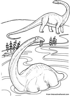 116 Best Dinosaur Images On Pinterest