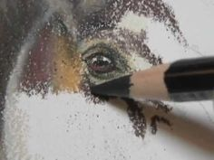 """▶ Painting a Day Demonstration - Horse by Roberta """"Roby"""" Baer PSA - YouTube"""