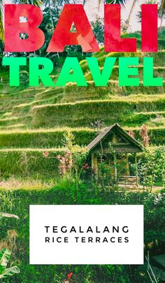 Our Bali travel guide to the Tegalalang Rice Terraces, with tips and tricks to enjoy the famous jungle rice paddies in Ubud, Indonesia without the crowds! Bali Travel Guide, Asia Travel, Travel Guides, Travel Tips, Flights To Bali, Ubud Indonesia, Bali Resort, Rice Terraces, Cool Places To Visit