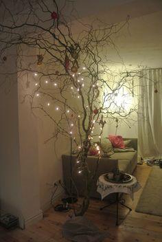 Statt dunkler Tanne lichte Zweige von der Korkenzieherhasel als Weihnachtsbaum.
