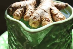 Green fingers. Growing organic ginger and turmeric in a cold climate. Cultiver le curcuma et gingembre bio. Crecer cúrcuma  y el jengibre orgánico.