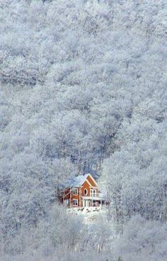 lost in the winter. Snowy Cabin Home Winter Szenen, I Love Winter, Winter Magic, Winter Time, Winter Christmas, Winter Travel, Beautiful World, Beautiful Places, Beautiful Pictures