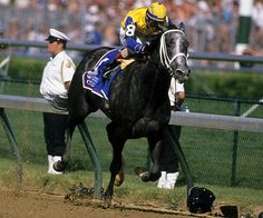 my favorite racehorse of all...Winning Colors..Top 10 female racehorse of all time. Watched her win the Kentucky Derby and she was the only filly in the race. Just ripped my heart out when she won by a nose! :) She was so fabulous and beautiful!