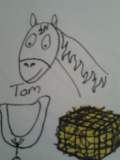 Tom the horse with his saddle and hay