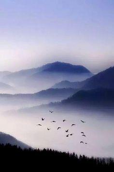 山氣日夕佳,飛鳥相與還。 此中有真意,欲辨已忘言