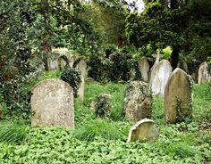 Titulo: La restauradora   Autor:  Amanda Stevens   Saga:  La reina del Cementerio 1/6   Editorial: Roca Editorial   Género:...