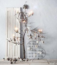 Carla's Christmas Trees