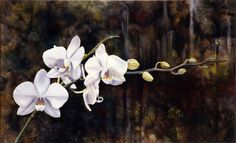 Orchids    Oil on Canvas | 89cm x 55cm - ©2006, Matthew Bates, All Rights Reserved - Private Collection