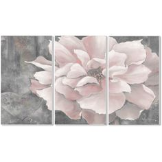 Pastel Pink Peony on Grey 3-piece Triptych Wall Plaque Set ($70) ❤ liked on Polyvore featuring home, home decor, wall art, gray home decor, unframed wall art, vertical wall art, grey home decor and framed wall art