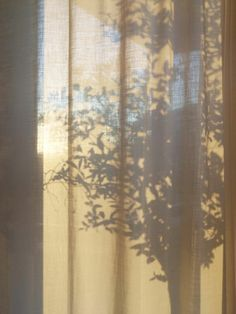 Stories: Spaces To Grow & Play - Arper Cream Aesthetic, Brown Aesthetic, Aesthetic Art, Aesthetic Pictures, Sun Blinds, Shadow Photography, Jolie Photo, Morning Light, Light And Shadow