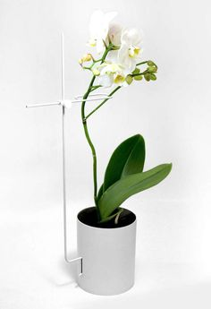 The Orchid Pot by Yeonju Yang is Streamlined and Sophisticated #design #creativity trendhunter.com