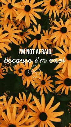 I'm not afraid, because I'm Exol