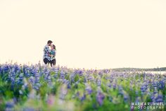 engagement session in a field of flowers | http://www.mariearummel.com/blog   (CLICK ON PHOTO TO SEE MORE)
