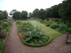 Dirleton Castle gardens