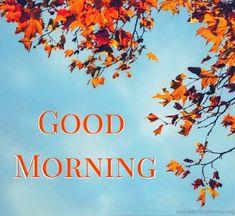 Beautiful Pic Of Good Morning 15