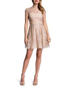 T864T Cynthia Steffe Lace Fit & Flare Dress