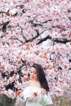 spring sakura cherry blossom fashion portrait asian beauty photo shoot london regents park _08