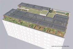 Erster stromproduzierender Dachgarten in Wien präsentiert - Energie - derStandard.at › Greenlife